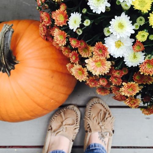 Health and beauty benefits of pumpkin