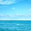 The-soothing-sound-of-waves-rolling-onto-shore-the-mineralrich-water-and-sand-the-invigorating-scent-of-salty-breezes-in-the-air--its-no-wonder-human-_360_40161270_1_14134519_100.jpg
